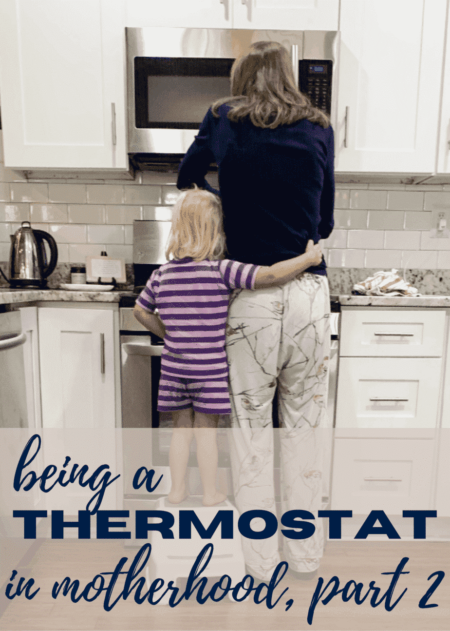 The Thermostat {part 2}